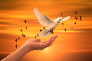 Sous la mouvance de l'Esprit  – Homélie du Lundi de la 4è semaine de Pâques, 04.05.2020 Année A