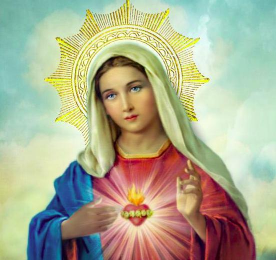 Trouver Jésus – Homélie du Samedi de la 11è semaine du Temps ordinaire, 20.06.2020 Année A