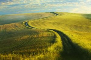 Le chemin de la persévérance – Homélie du Samedi de la 24è semaine du Temps ordinaire, 19.09.2020 Année A