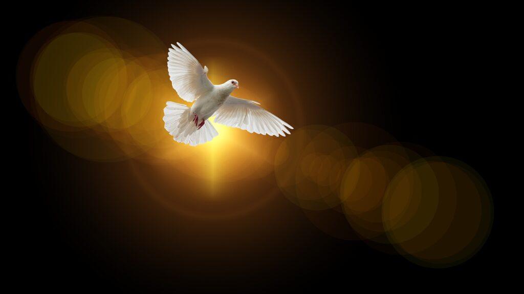 L'Esprit Saint est de Dieu – Homélie du Samedi de la 28è semaine du Temps ordinaire, 17.10.2020 Année A